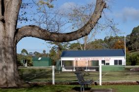 Elder Tree Bough frames the view